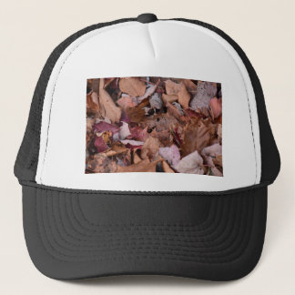 Fall leaves in the Smoky Mountains Trucker Hat
