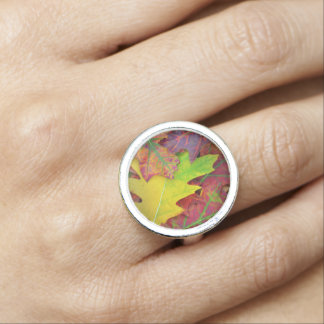 Fall Leaves in yellow, red, orange and Purple Ring
