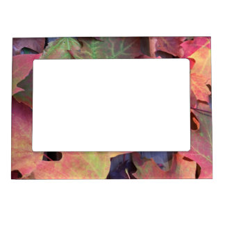 Fall Leaves Magnetic Frame