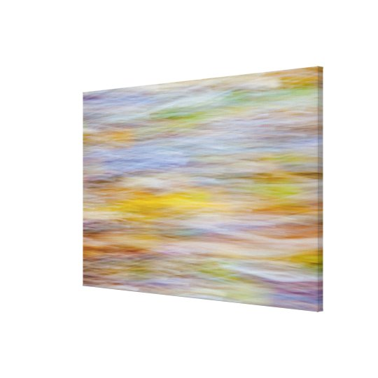 Fall leaves on Beach | Seabeck, WA Canvas Print