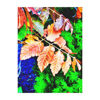 Fall leaves on evergreen background canvas print
