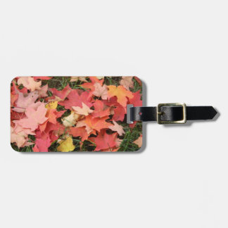Fall Leaves on The Grass Luggage Tag