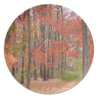 fall leaves plate