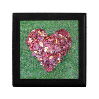 Fall Leaves Raked into Heart Shape on Green Grass Gift Box