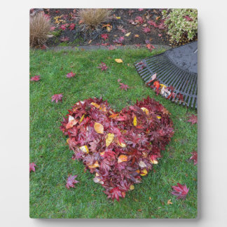 Fall Leaves Raked into Heart Shape on Green Grass Plaque