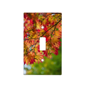 Fall Leaves Switch Plate Cover