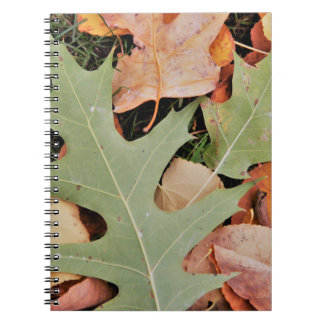Fall leaves with yellows and green spiral notebook