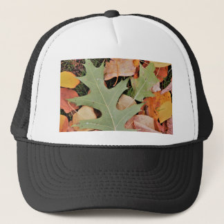 Fall leaves with yellows and green trucker hat