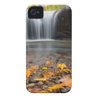 Fall Maple Leaves at Hidden Falls waterfall iPhone 4 Case-Mate Case