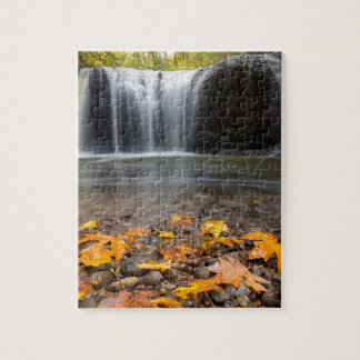 Fall Maple Leaves at Hidden Falls waterfall Jigsaw Puzzle