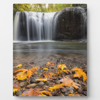 Fall Maple Leaves at Hidden Falls waterfall Plaque