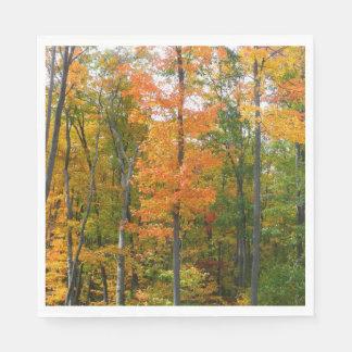Fall Maple Trees Autumn Nature Photography Disposable Napkin