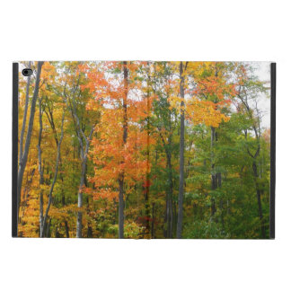 Fall Maple Trees Autumn Nature Photography Powis iPad Air 2 Case