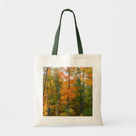Fall Maple Trees Autumn Nature Photography Tote Bag