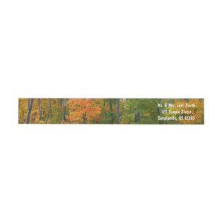 Fall Maple Trees Autumn Nature Photography Wrap Around Label