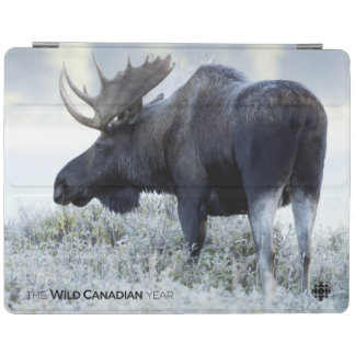 Fall - Moose iPad Cover