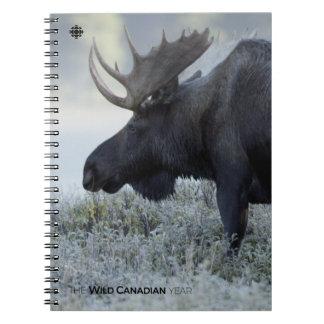 Fall - Moose Notebook