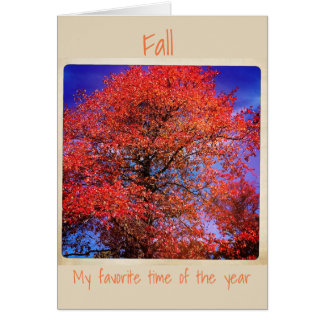 Fall My Favorite time of the year Card