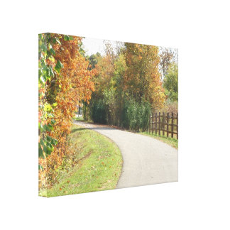 Fall Nature Trail Canvas Print