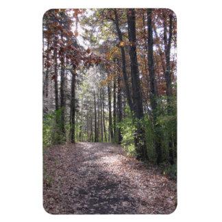 Fall path magnet