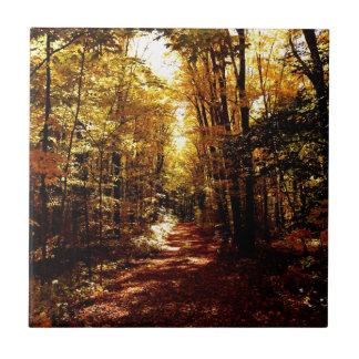 Fall Path on the Island Ceramic Tile