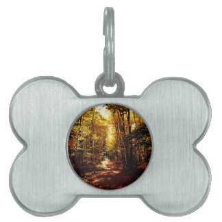Fall Path on the Island Pet Name Tag
