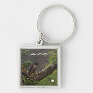 Fall - Peregrine Falcon Keychain