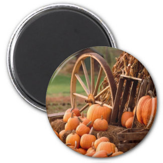 Fall Pumpkin Harvest Magnet