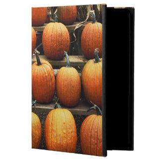 Fall pumpkins iPad air case