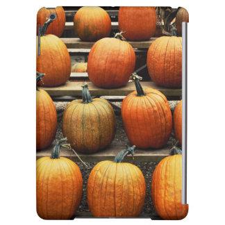 Fall pumpkins iPad air cases