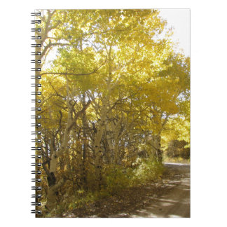 fall road note book