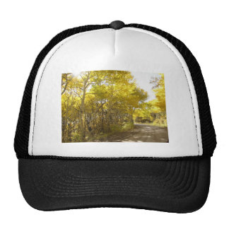 fall road trucker hat