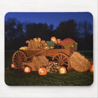 Fall scene mouse pad