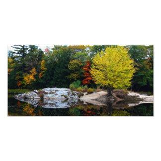 Fall scene print photograph