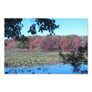 Fall Scenery Photo