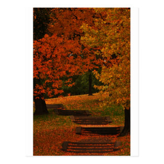 fALL STAIRWAY Postcard