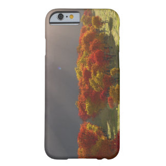 Fall Storm Phone Case