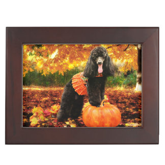 Fall Thanksgiving - Gidget - Poodle Keepsake Boxes