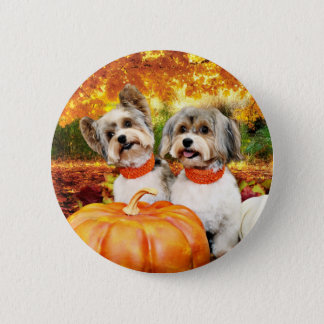 Fall Thanksgiving - Max & Leo - Yorkies 2 Inch Round Button