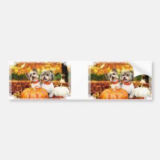 Fall Thanksgiving - Max & Leo - Yorkies Bumper Sticker