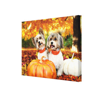 Fall Thanksgiving - Max & Leo - Yorkies Canvas Print