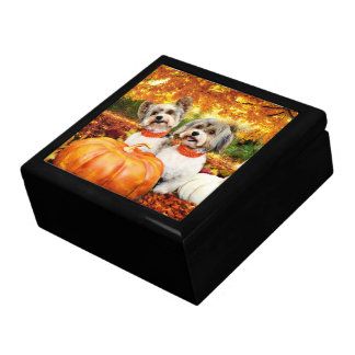 Fall Thanksgiving - Max & Leo - Yorkies Gift Box
