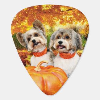 Fall Thanksgiving - Max & Leo - Yorkies Guitar Pick