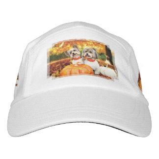 Fall Thanksgiving - Max & Leo - Yorkies Hat