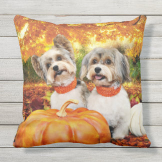 Fall Thanksgiving - Max & Leo - Yorkies Outdoor Pillow