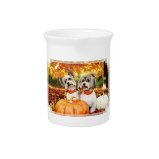 Fall Thanksgiving - Max & Leo - Yorkies Pitcher