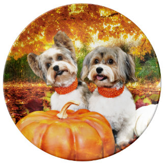 Fall Thanksgiving - Max & Leo - Yorkies Plate