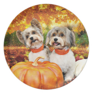 Fall Thanksgiving - Max & Leo - Yorkies Plate