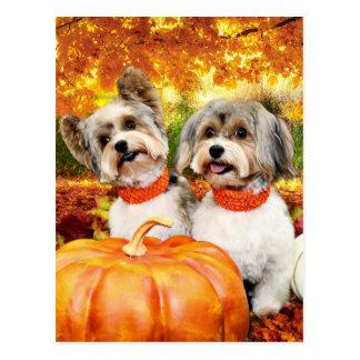 Fall Thanksgiving - Max & Leo - Yorkies Postcard