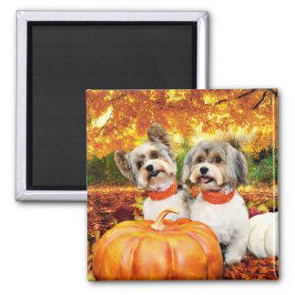 Fall Thanksgiving - Max & Leo - Yorkies Square Magnet